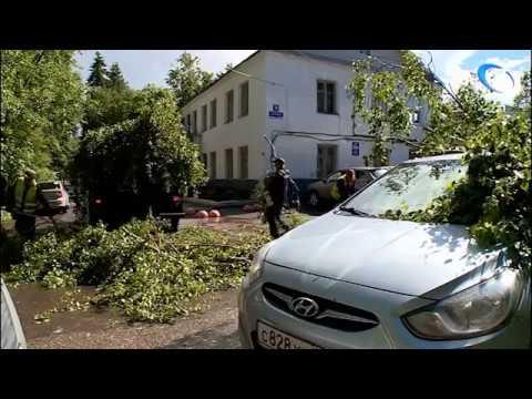 Великий Новгород оправляется от удара стихии