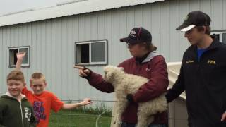 Reedsburg (WI) United States  city images : Reedsburg students visit Horkan farm