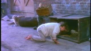 "Video El Niño Sin Hogar & Padre Borracho Alcoholico, ""Alguien Me Ama"" MP3, 3GP, MP4, WEBM, AVI, FLV Agustus 2018"