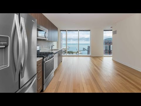 A spacious lake view convertible at Streeterville's North Water tower