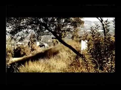 Video of Shadmehr