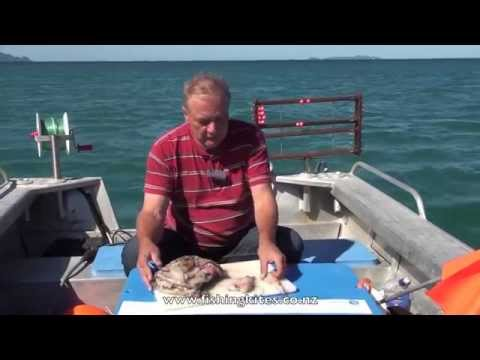 Snapper Longline Fishing Methods