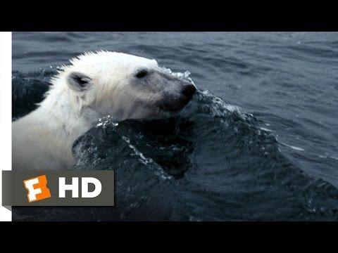 Arctic Tale (1/10) Movie CLIP - Hunting Walrus (2007) HD