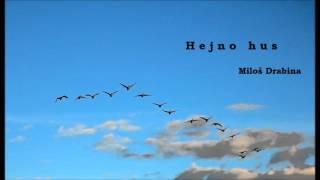 Video Hejno hus - Miloš Drabina