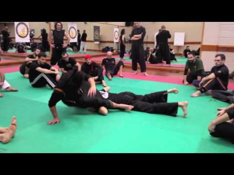 SILAT OPEN CIRCLE : Introduction to SBL, Italy November 2013
