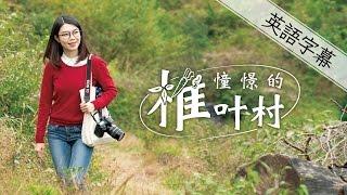 憧憬的椎叶村(英語版)