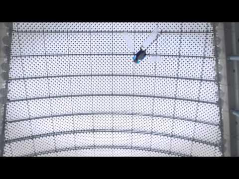 LE premier drone libellule.