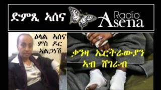 Voice Of Assenna:Interview With Dr Alganesh Feseha And Eyewitness Account From Shagarab Refugee Camp
