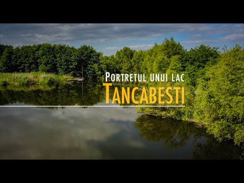 Portretul unui lac: Tancabesti