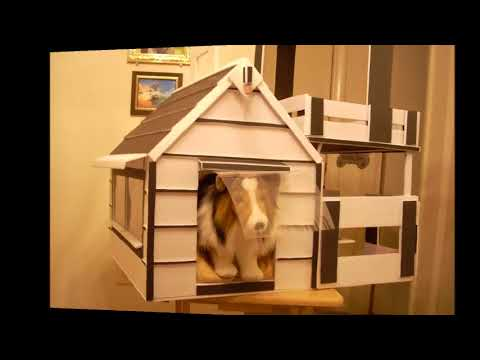 DIY Doghouse For Plush Lassie