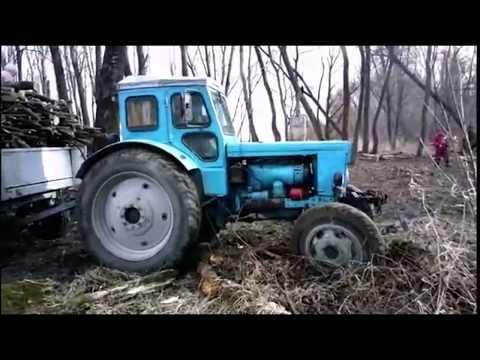 video-devushki-z-devushkami