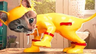 Video Fun Pet Care Game - Little Kitten Adventures - Play Fun Costume Dress-Up Party Mini Games For Kids MP3, 3GP, MP4, WEBM, AVI, FLV Juni 2018