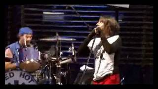 Red Hot Chili peppers Live at Slane Castle Full Concert