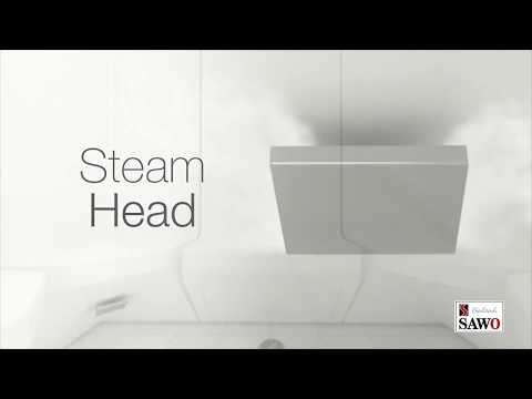 Steam Head