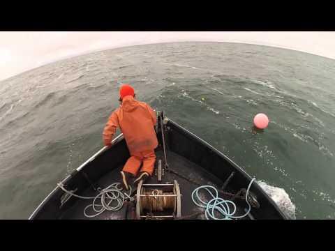 มาดูวิธีหาปลาแบบมืออาชีพ ของประมงเมืองนอกกัน