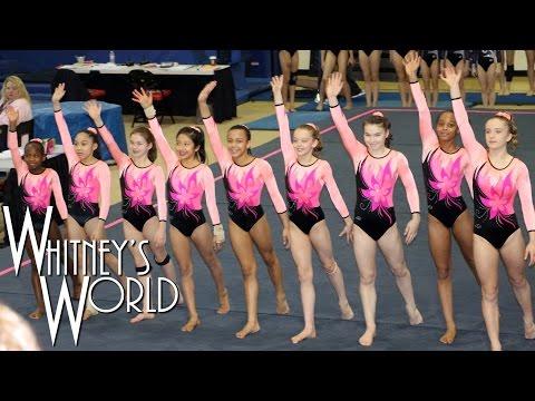 Whitney Bjerken | 5th Level 8 Gymnastics Meet | New Team