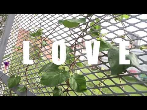*UNSIGNED HYPE* STABLE- LOVE [OFFICIAL VIDEO]