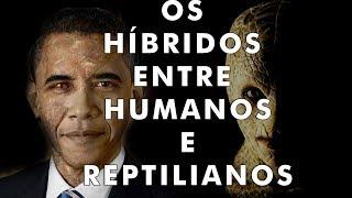 """Vocês aí sabem """"Quem são os reptilianos? A raça mais temida pelos ufólogos?"""". Pois é, é exatamente essa questão que nós..."""