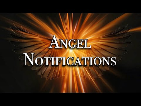 Phil Good - Angel Notifications
