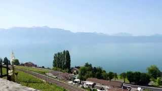 Lutry Switzerland  City new picture : View of Lake Geneva from little hill in Lutry, Switzerland