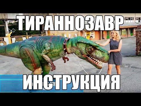 Как сделать костюм динозавра сам
