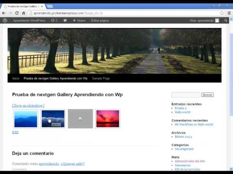 Tutorial del plugin NextGen Gallery WordPress