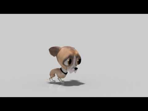 Chihuahua come moscas -Chihuahua eats fly
