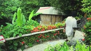 Yes, there is a paradise: it's called Dominica. The Caribbean island is blessed with an abundance of natural sulphur springs. For the ultimate in relaxation,...