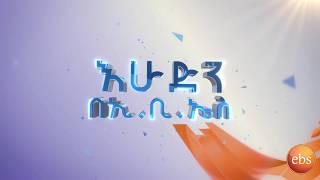 አዳዲስ መረጃዎችን ከእሁድን በኢቢኤስSunday with EBS New Highlights