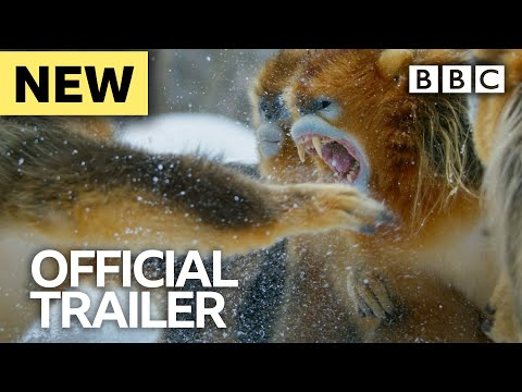 Seven Worlds, One Planet: Trailer - BBC Earth