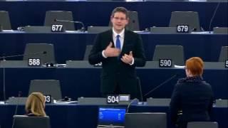 Képviselői felszólalás – 2016.11.22. Strasbourg