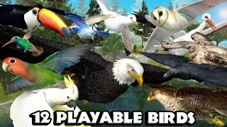 #Ultimate #Bird #Simulator׃ By Gluten Free games -  Game Trailer for iOS and Android