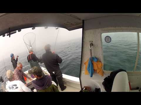 North Cal Sportfishing - Salmon Fishing Bodega Bay ,California on