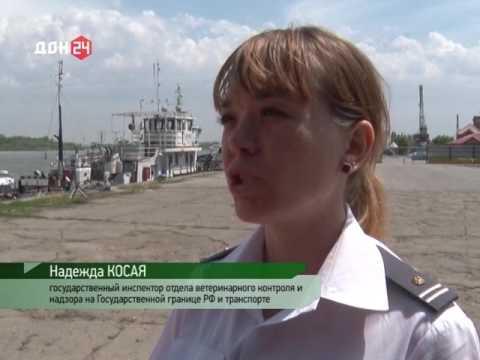 О проверке сельхозпродукции в Азовском речном порту на ГМО