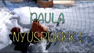 Download Video UDAH GA BERANI, TETEP DIPAKSA MAIN SKI !! PAULA NYUNGSEP KE NET !! MP3 3GP MP4