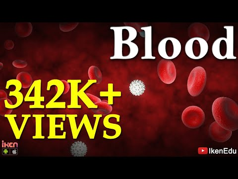 Blood and its function