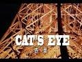 CAT'S EYE (カラオケ) 杏里