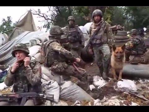 Перемирие на востоке Украины продлено до 30 июня (новости) http://9kommentariev.ru/