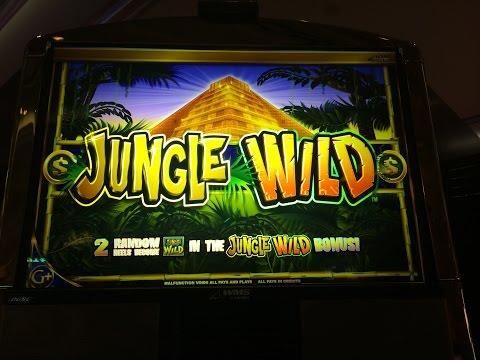 Jungle Wild Slot Machine Bonus-dollar denomination-4 bonuses
