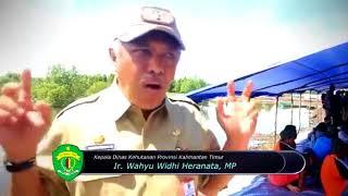 Pengembangan Demplot Tambak Ramah Lingkungan di KPHP Delta Mahakam