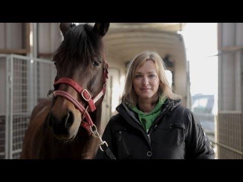 naar paarden luisteren