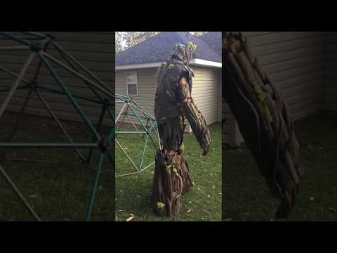 Dad Builds Amazing Groot Costume for Himself and Adorable Rocket Costume for His 3YearOld