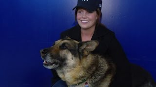Nonton Marine Who Fought to Adopt K-9 Partner in Iraq Is Now a Movie, 'Megan Leavey' Film Subtitle Indonesia Streaming Movie Download