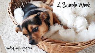 A Simple Week   Weekly Family Vlog #47