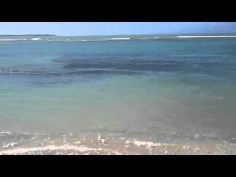 Sol Melia Hotel beach in Rio Grande, Puerto Rico