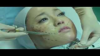Nonton J   Movie 2012 Helter Skelter Sub Indo Film Subtitle Indonesia Streaming Movie Download