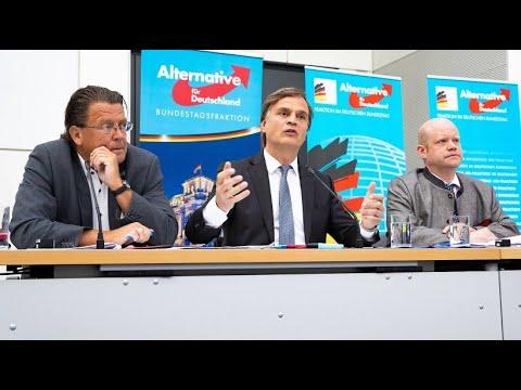 AfD: Brandner verliert Vorsitz in Rechtsausschuss des ...