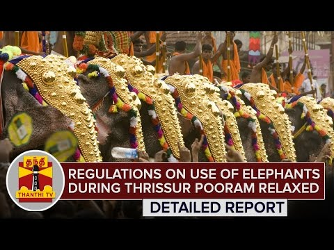Regulations-on-the-use-of-elephants-during-Thrissur-Pooram-celebrations-relaxed-ThanthI-TV