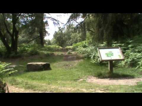 Nine Ladies Stone Circle from Birchover round | peak district  Walks