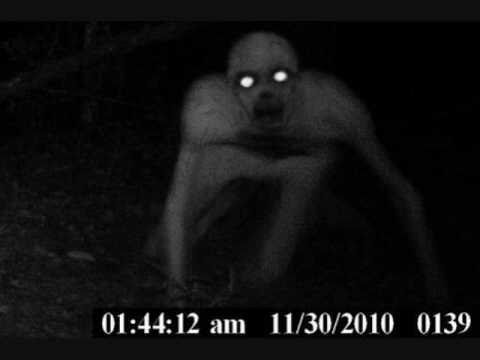 Real Ghosts?